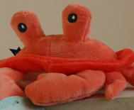 Mr CRABE/Doudou & Compagnie